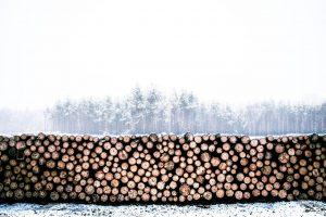 Hausbau im Winter